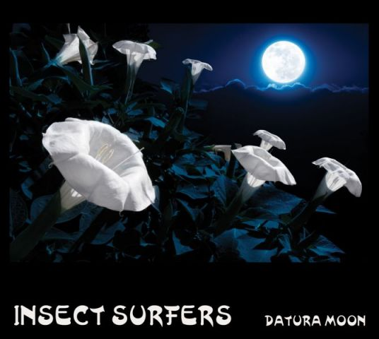 Insect Surfers - Datura Moon